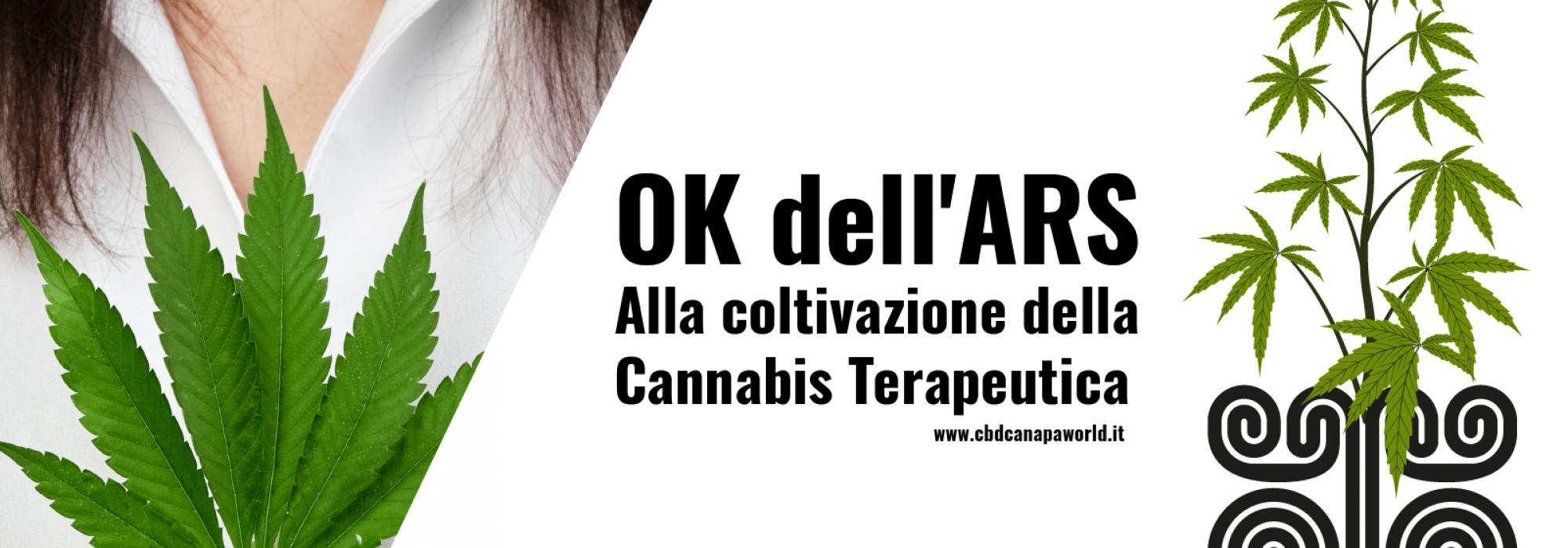 OK dell'Ars alla coltivazione della cannabis terapeutica